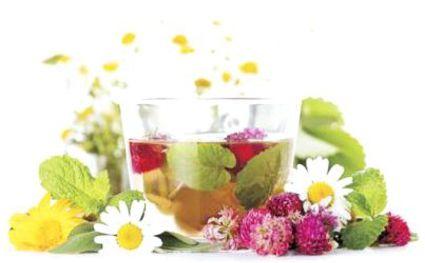 Лучшие травяные чаи для хорошего здоровья